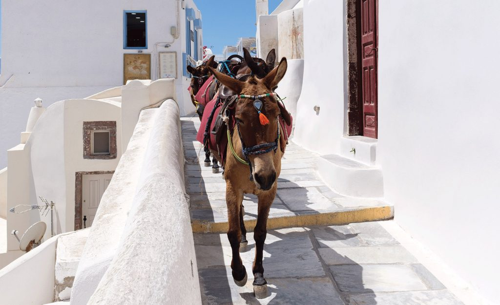 Guide me in Greece tours - Santorini